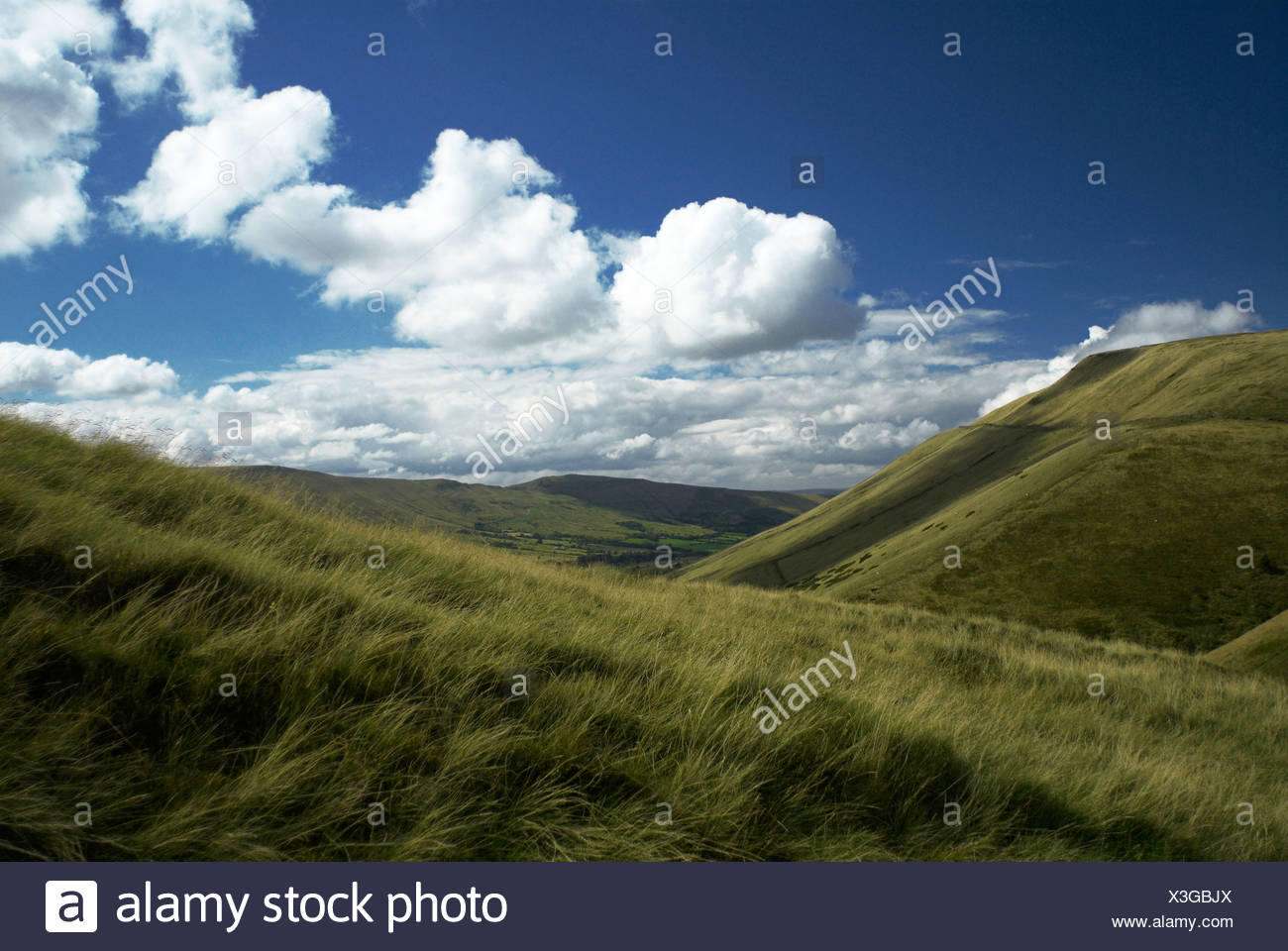 Upland landscape under blue sky and clouds Stock Photo