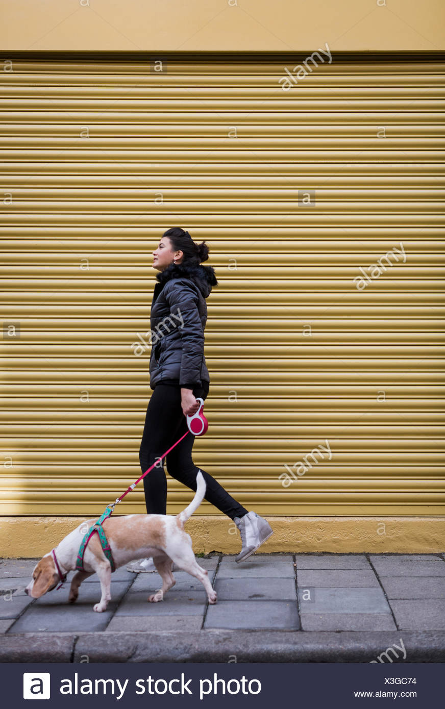 Woman and her dog walking on pavement in front of a roller shutter - Stock Image