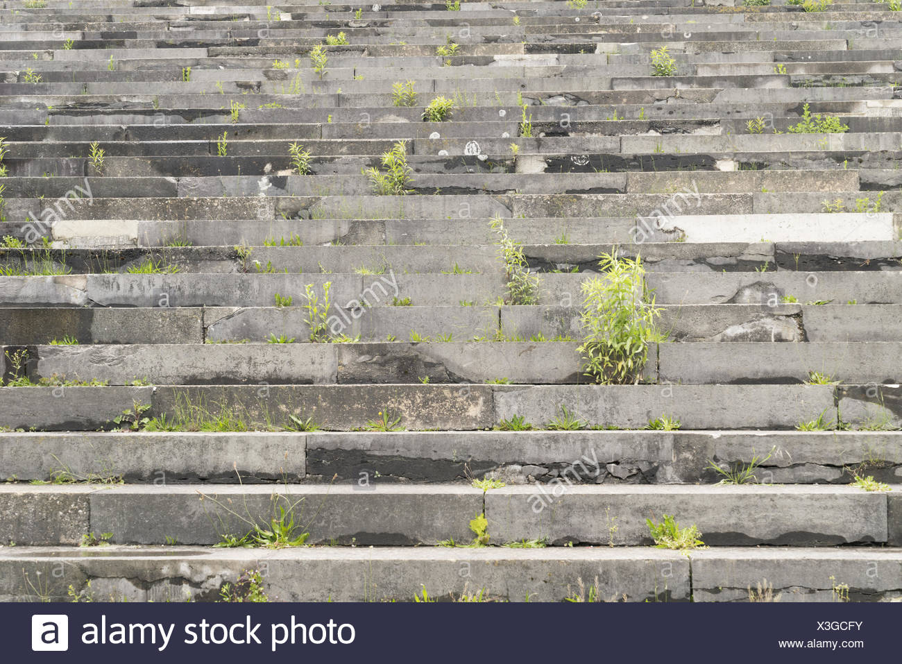 Third Reich Party Rally Grounds Stock Photo