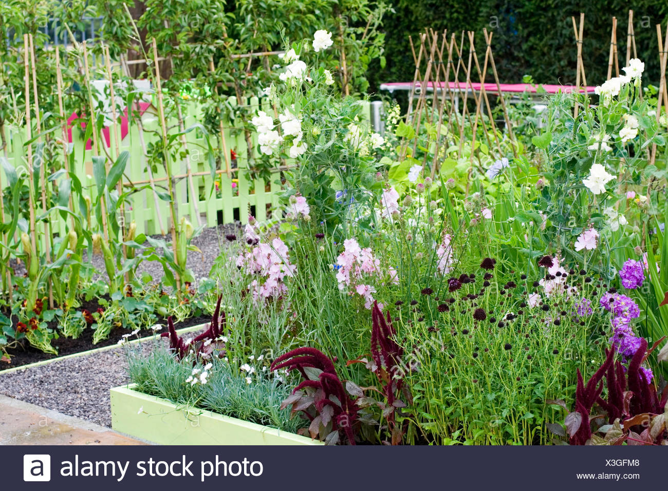 Mixed Country Potager Vegatbles And Flowers Designer Claire