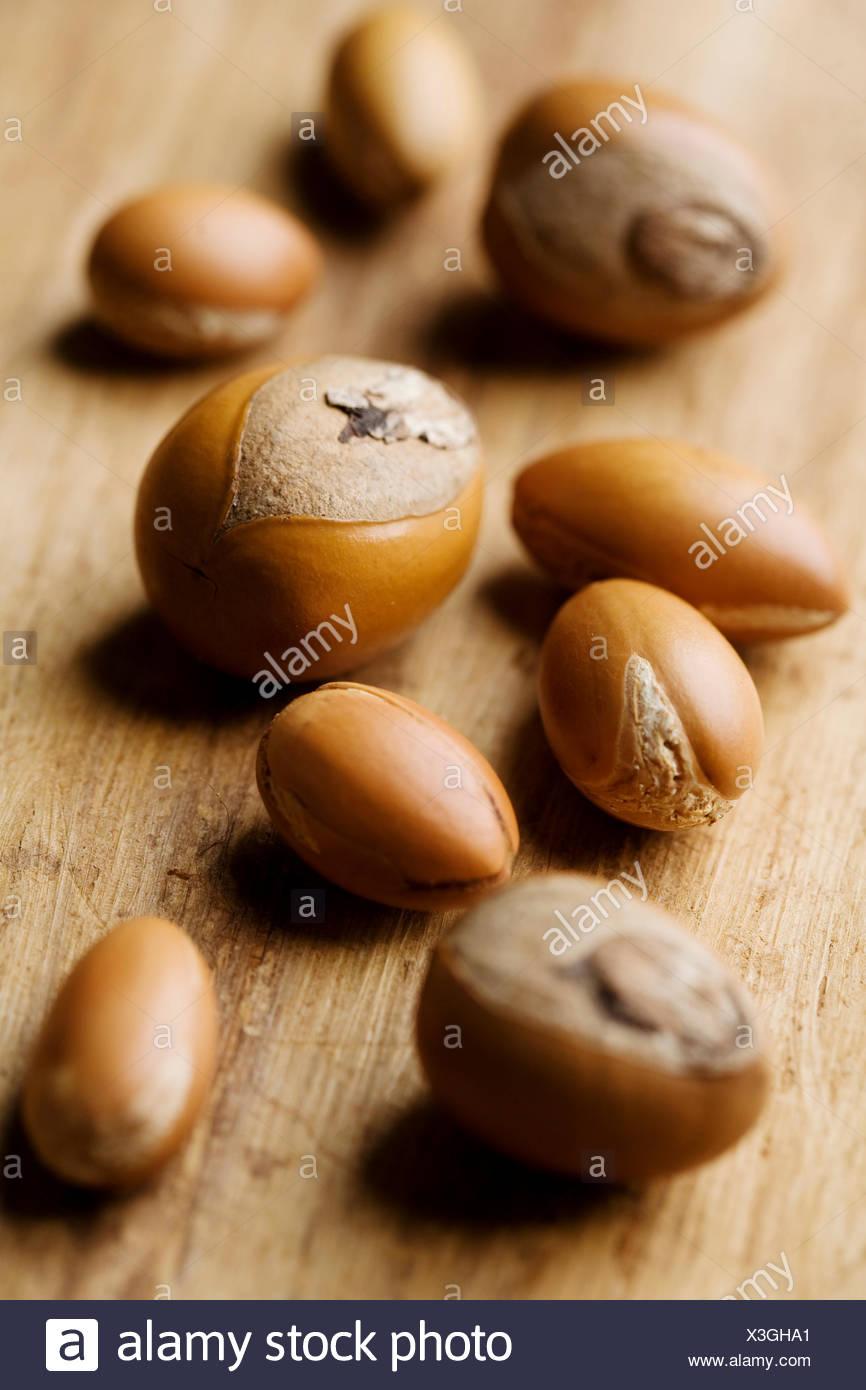 shea nut Stock Photo
