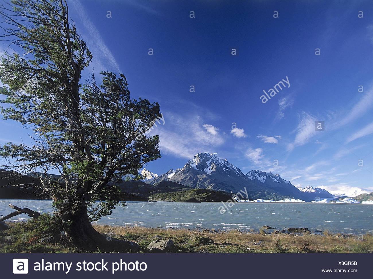 Chile, Patagonien, Torres del Paine Nationalpark, Berglandschaft, See, Grey Gletscher Südamerika,  Berglandschaft, Gletscher, Eis, Schnee,  Gewässer, Grey See, Treibeis, Kälte, gefroren, Gebirge, Natur, Landschaft, außen - Stock Image