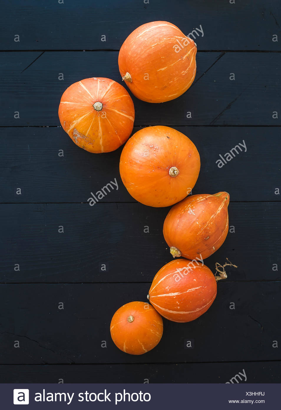 Ripe pumpkins over black rustic wooden backdrop, top view, copy space - Stock Image