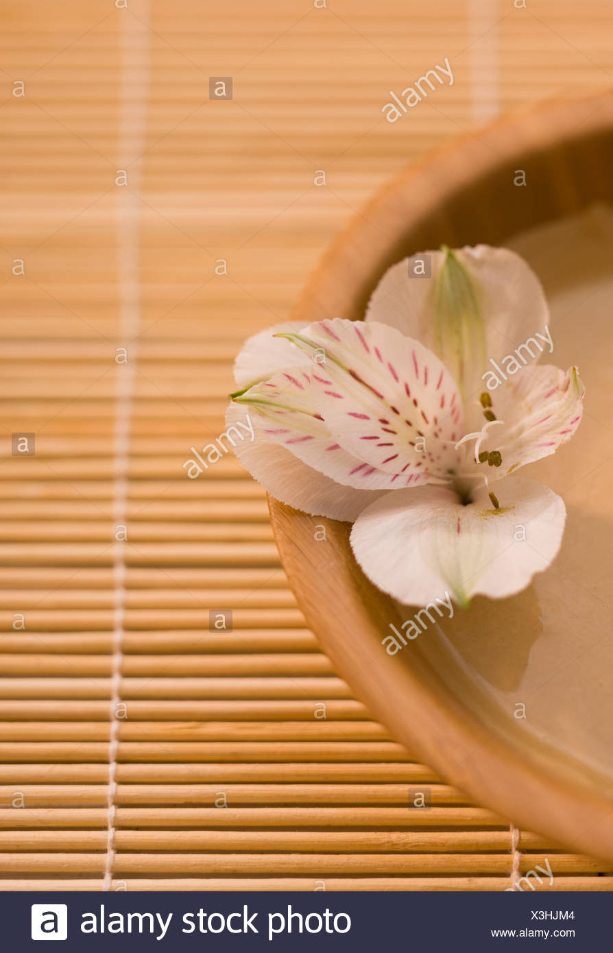 Peruvian lily (Alstromeria) in bowl of mud mask on bamboo mat Stock Photo