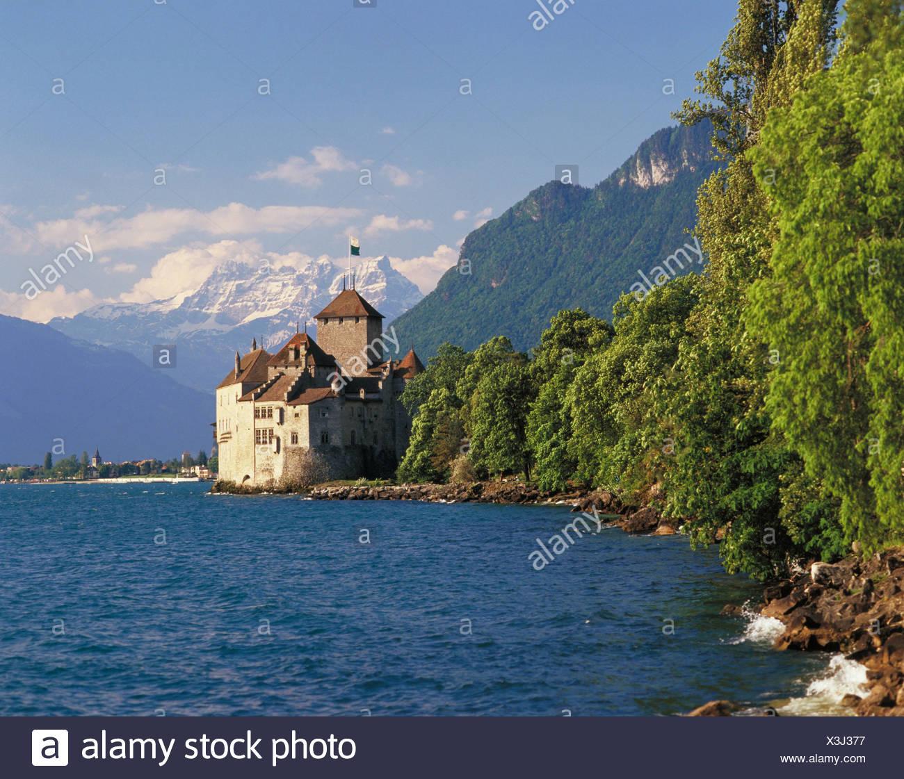 outside Dents du Midi bushes thicket castle Chillon Switzerland Europe lake Geneva Lake Geneva Vaud - Stock Image