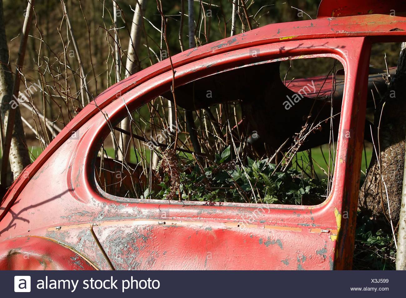 Old Volkswagen beetle overgrown by plants Stock Photo