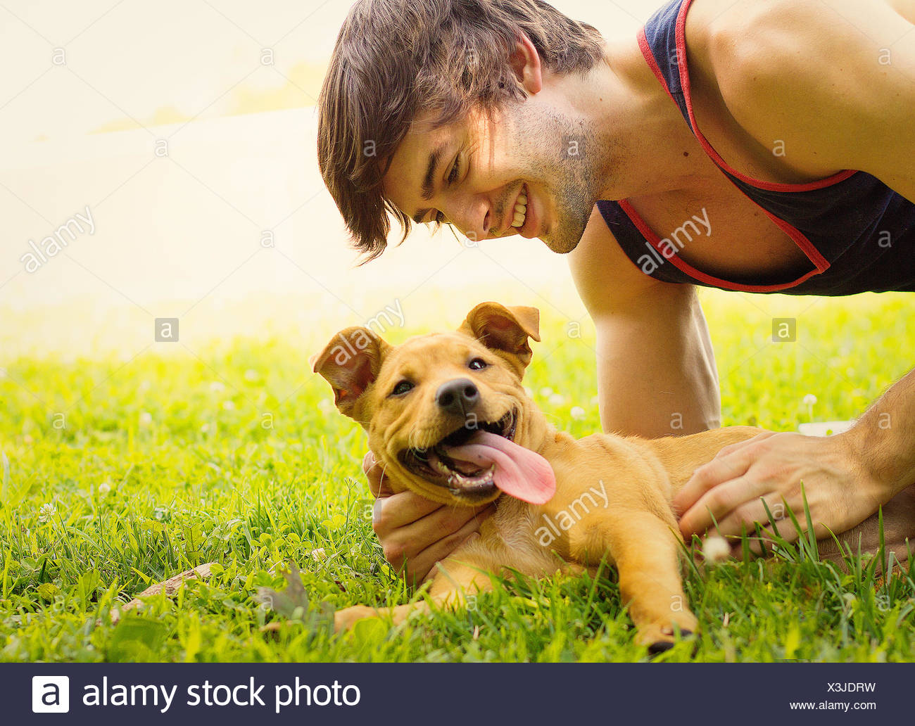 Smiling man lying on grass stroking his puppy dog - Stock Image