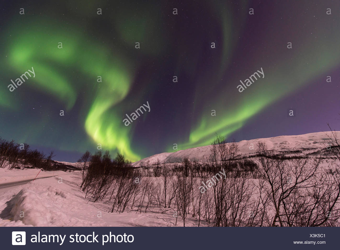 aurora eddy in winter landscape, Norway, Troms, Finnvikdalen - Stock Image