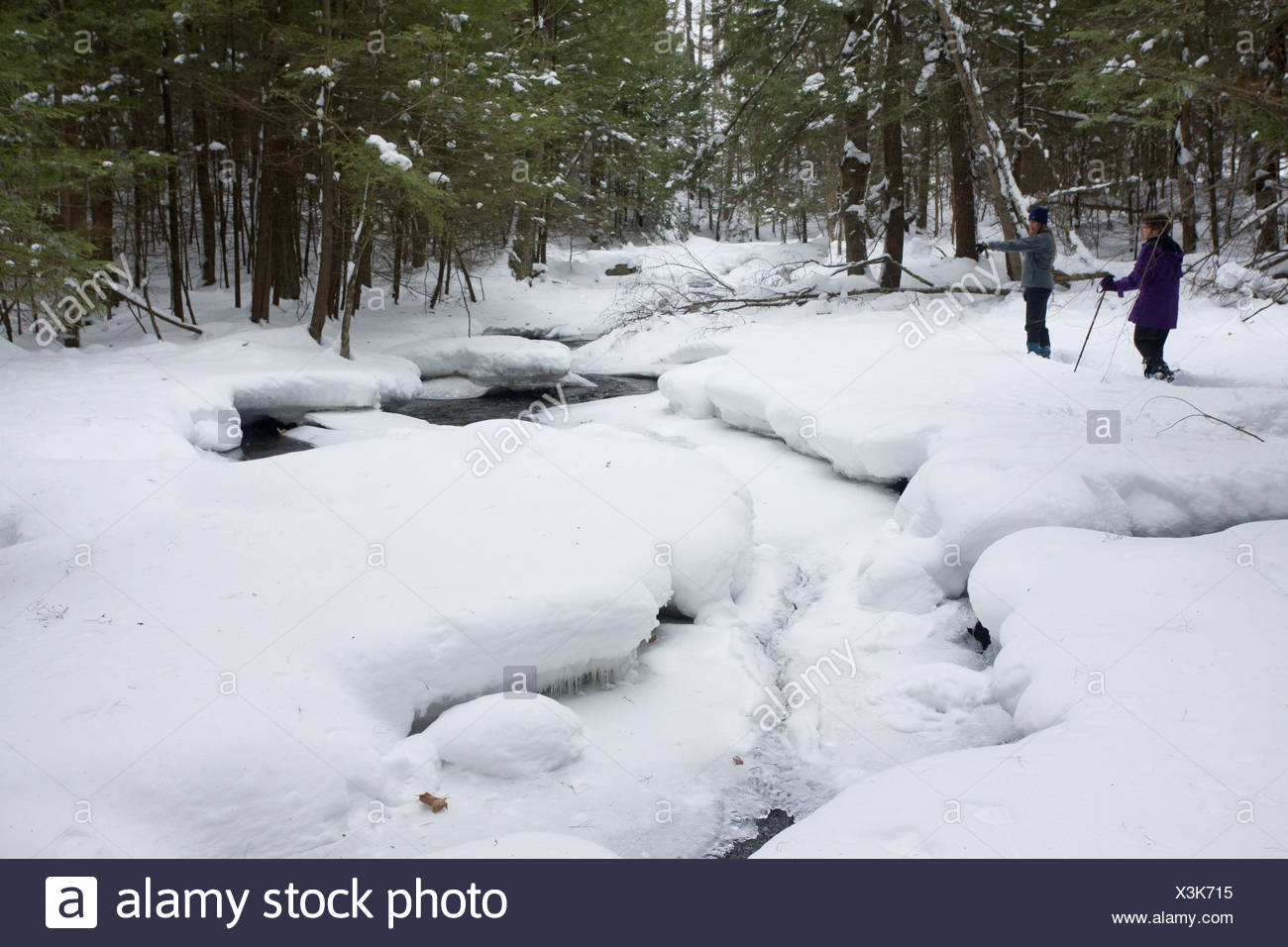 Stream woodland after heavy snow Robert Ingalls Preserve Rensselaer Land Trust Horsehaven Road Rensselaer County New York U.S.A - Stock Image