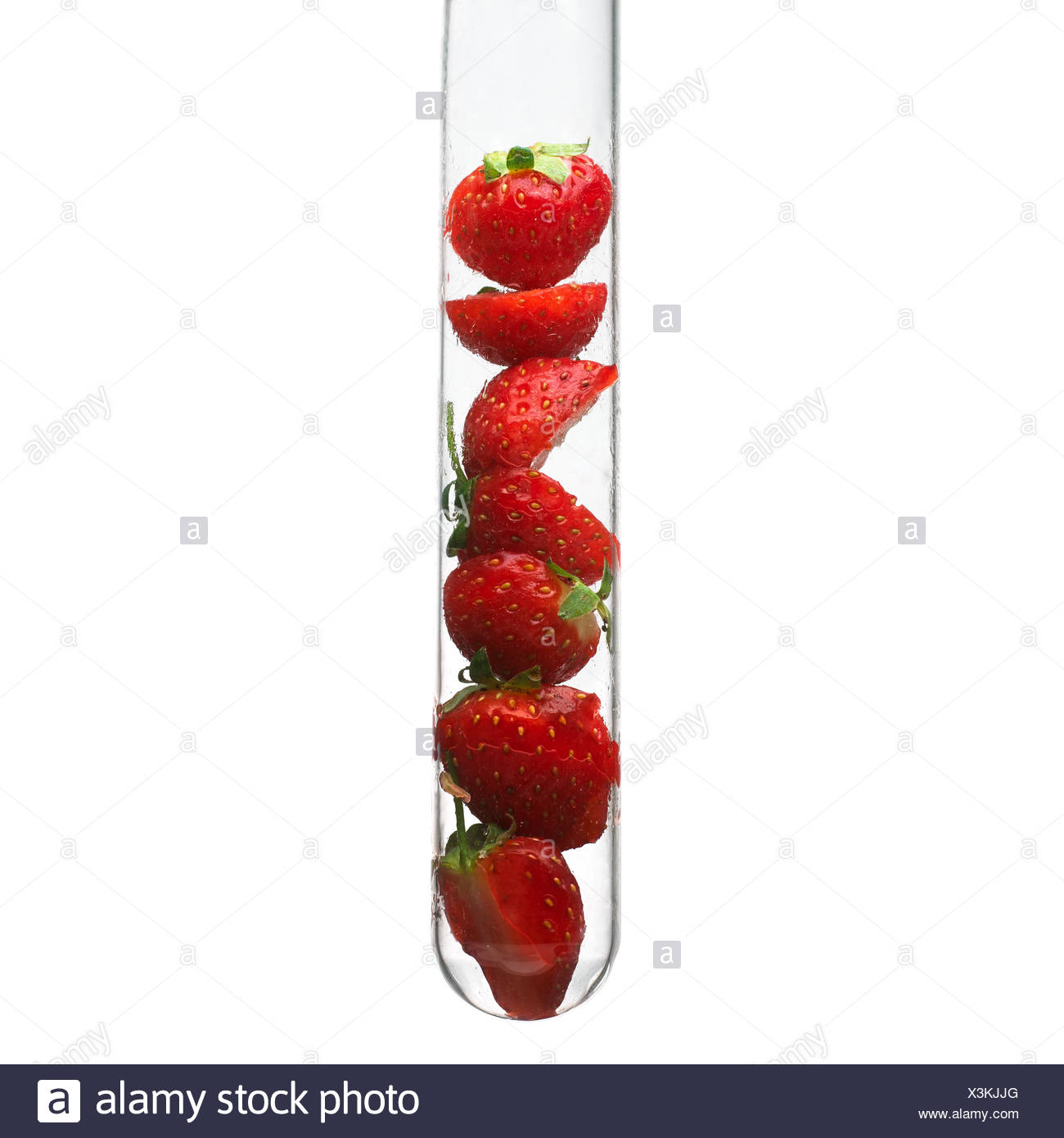 Strawberries in a test tube - Stock Image