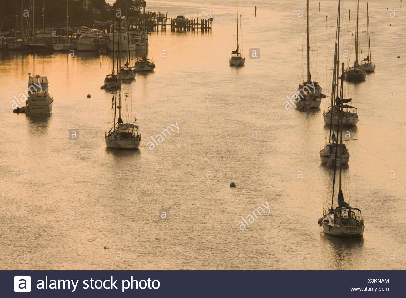 USA, Florida, Fort Myers, Yachthafen,  Morgenrot,   Nordamerika, Reiseziel, Meer, Wasser, Hafen, Boote, Yachten, Segelboote, Motorboote, ankern, Anlegestelle, Morgenlicht, - Stock Image