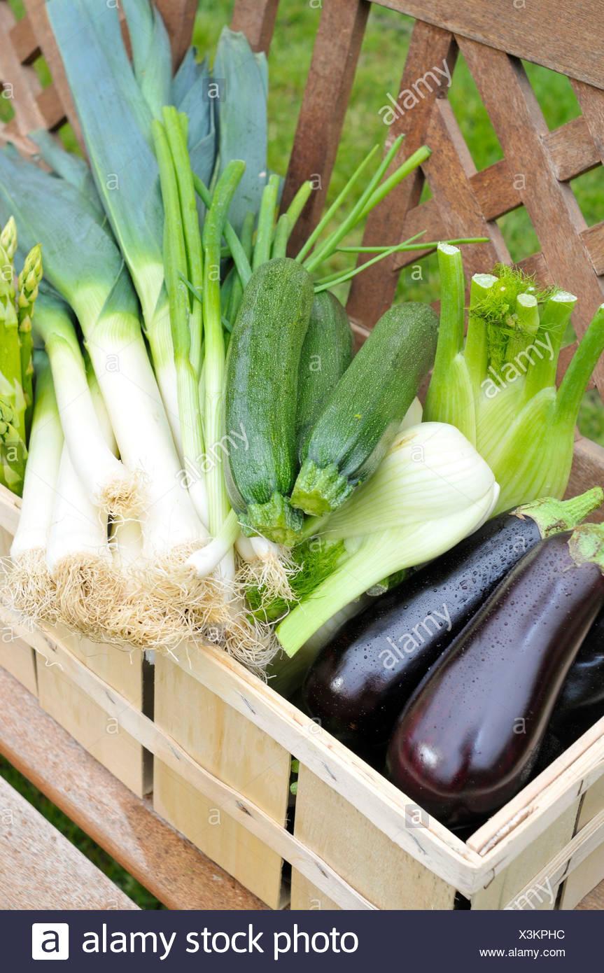 Green asparagus, eggplants, zucchini, spring onions, fennel, leeks in a basket Stock Photo