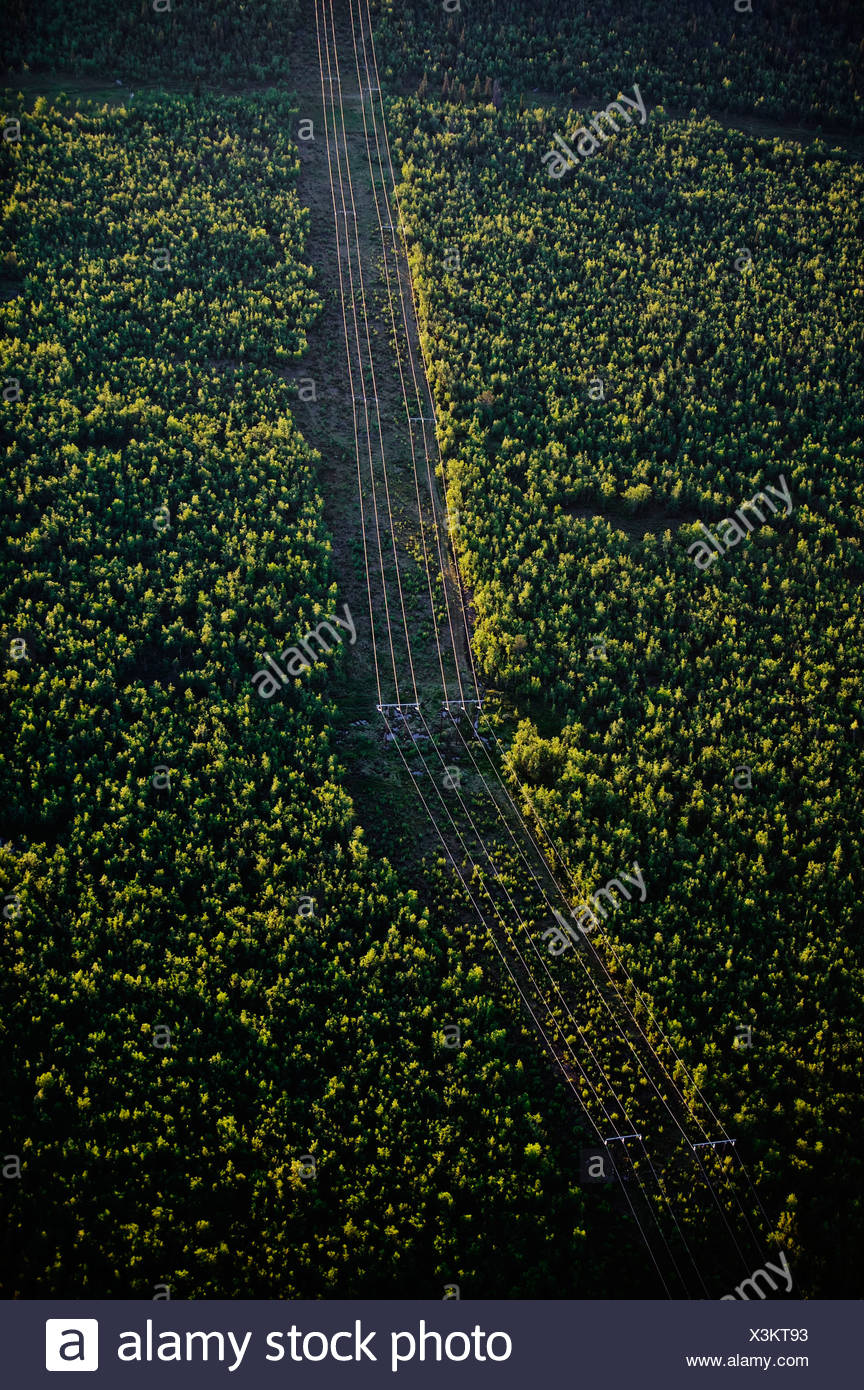 Power line through forest landscape, aerial view, Sweden. - Stock Image