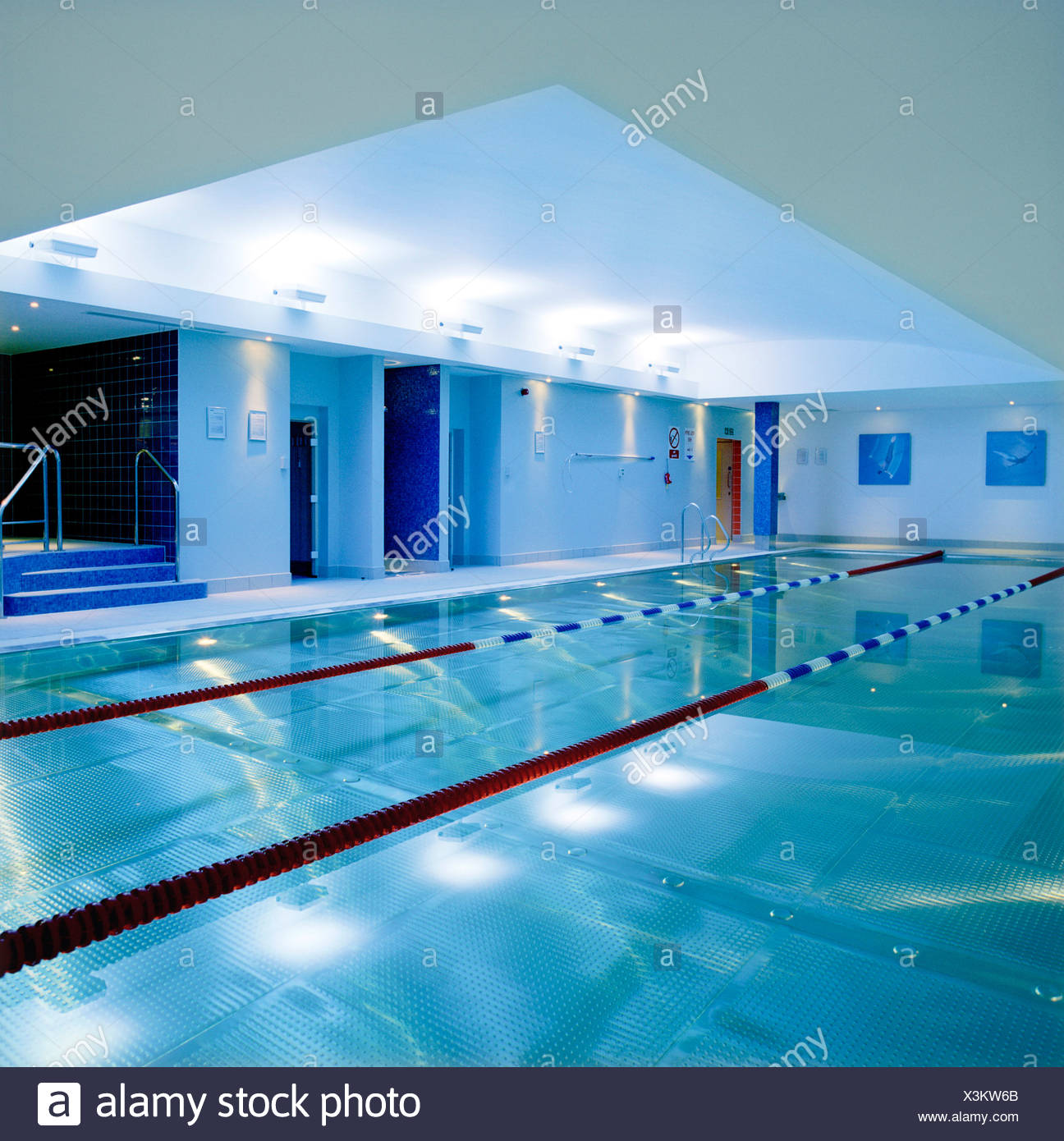 Refurbishment of a gym club including the swimming pool ...