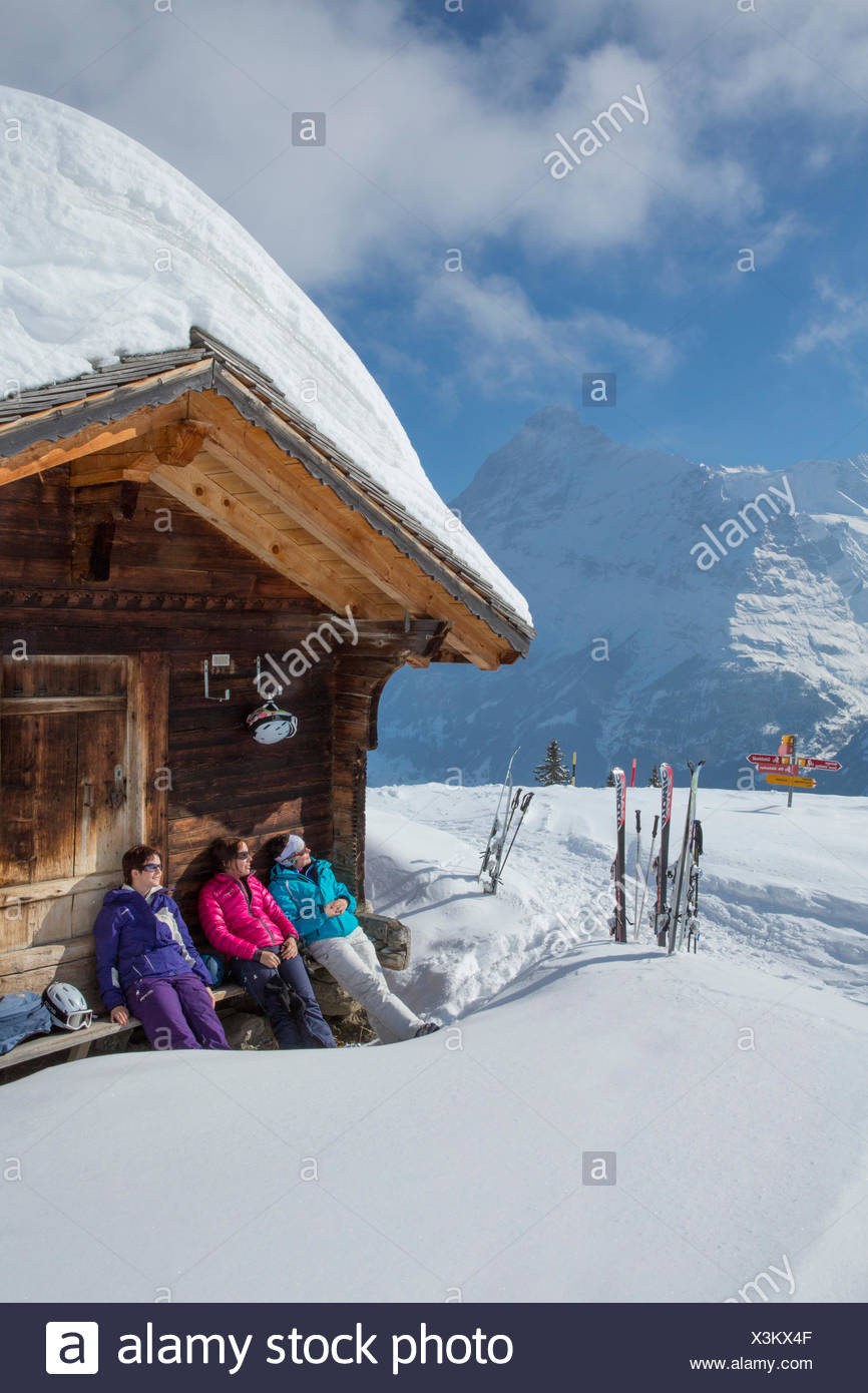 Ski, ski tourist, Grindelwald, ridge, Eigers, mountain, mountains, ski, skiing, Carving, winter, winter sports, canton Bern, Ber - Stock Image
