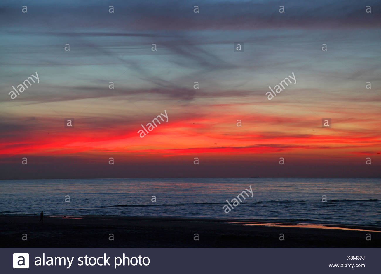 sunset at North Sea, Netherlands, Texel - Stock Image