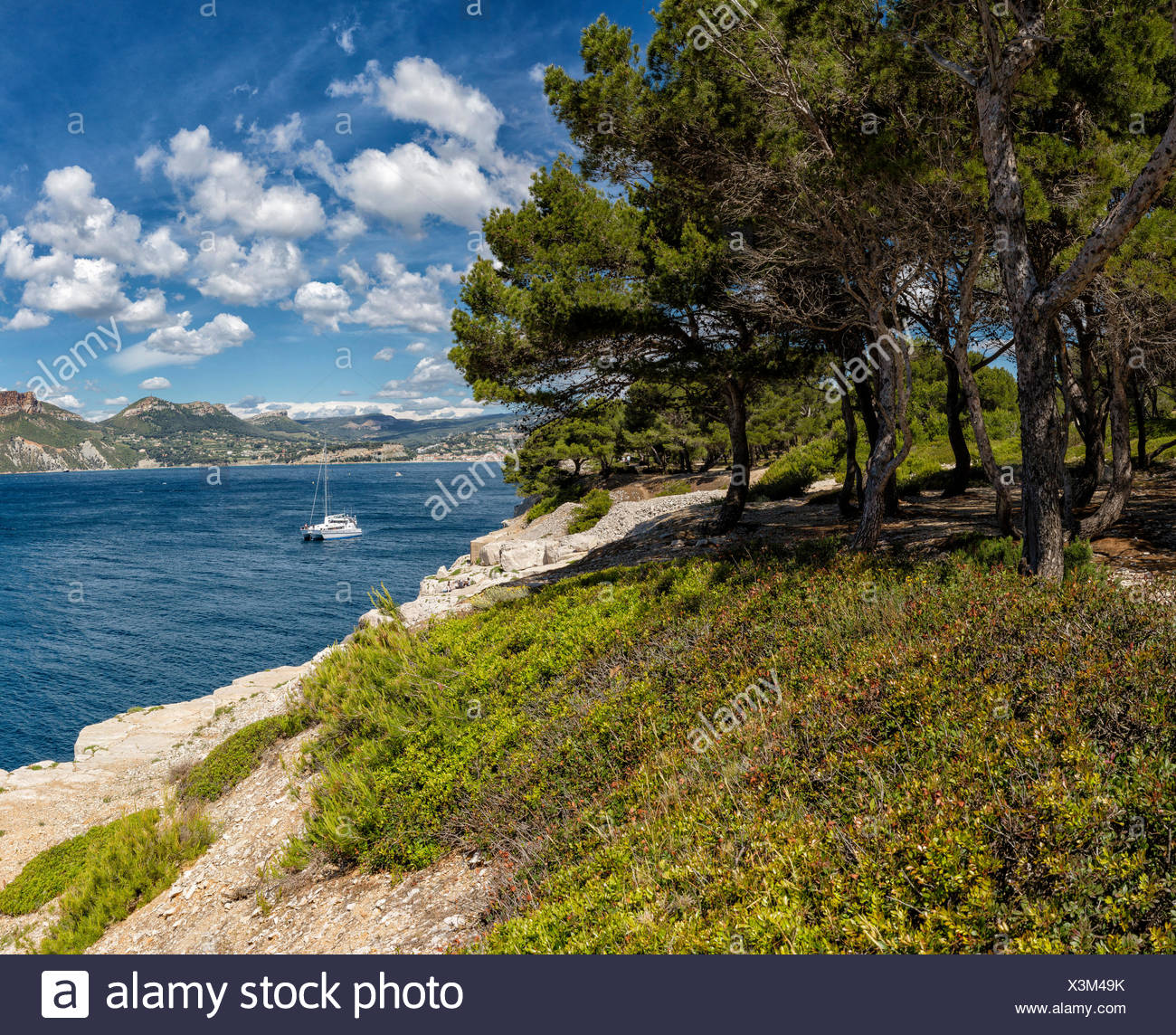 View, Cap de Bon voyage, landscape, water, trees, spring, mountains, sea, ships, boat, Cassis, Bouches du Rhone, France, Europe, - Stock Image