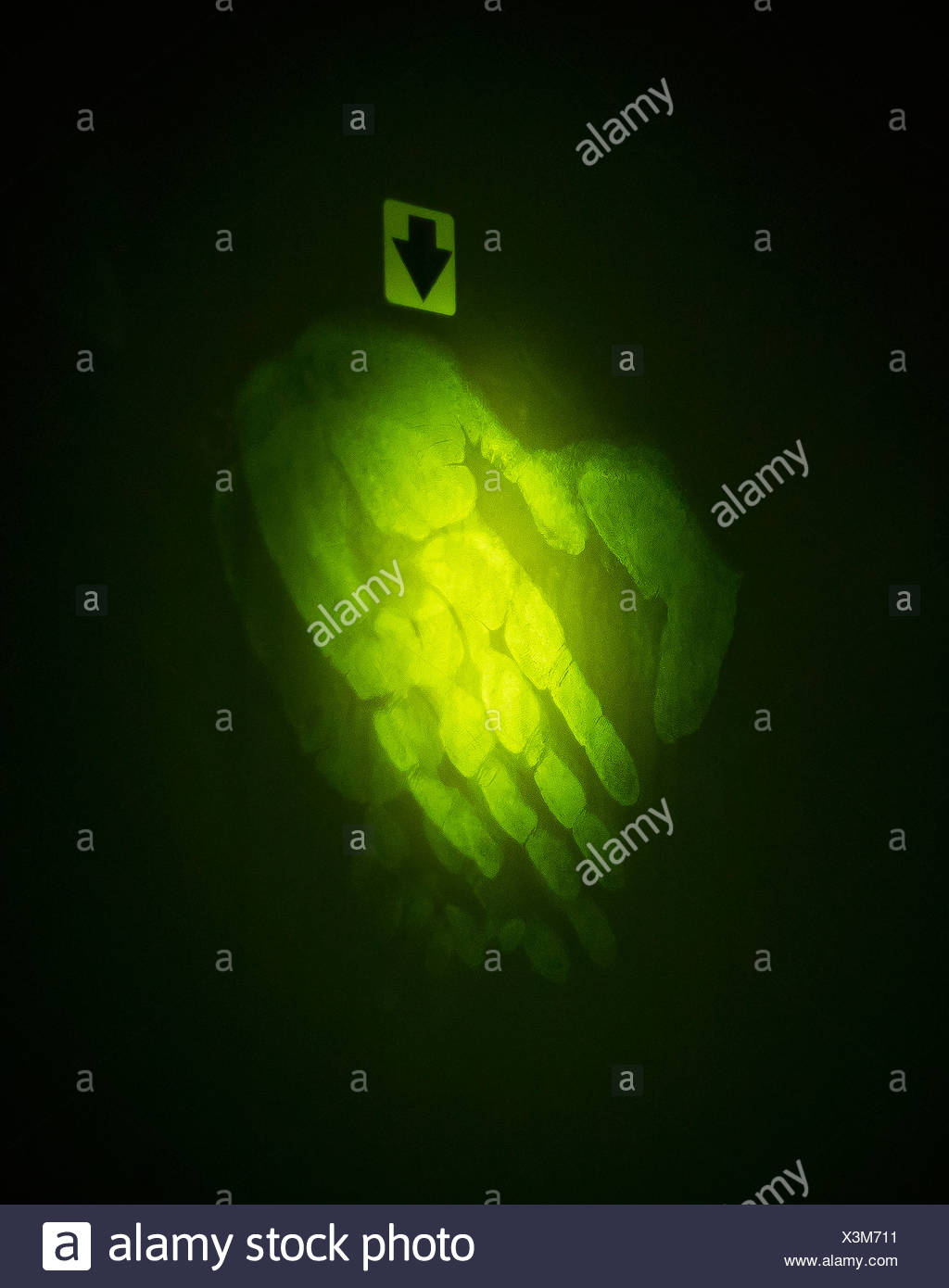Close up of handprint in forensic lab - Stock Image