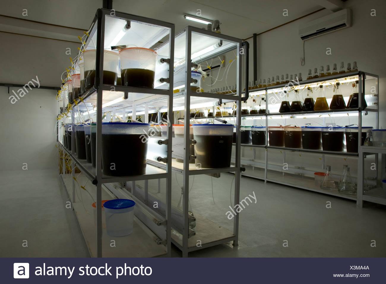 Indonesia laboratory stock photos indonesia laboratory stock