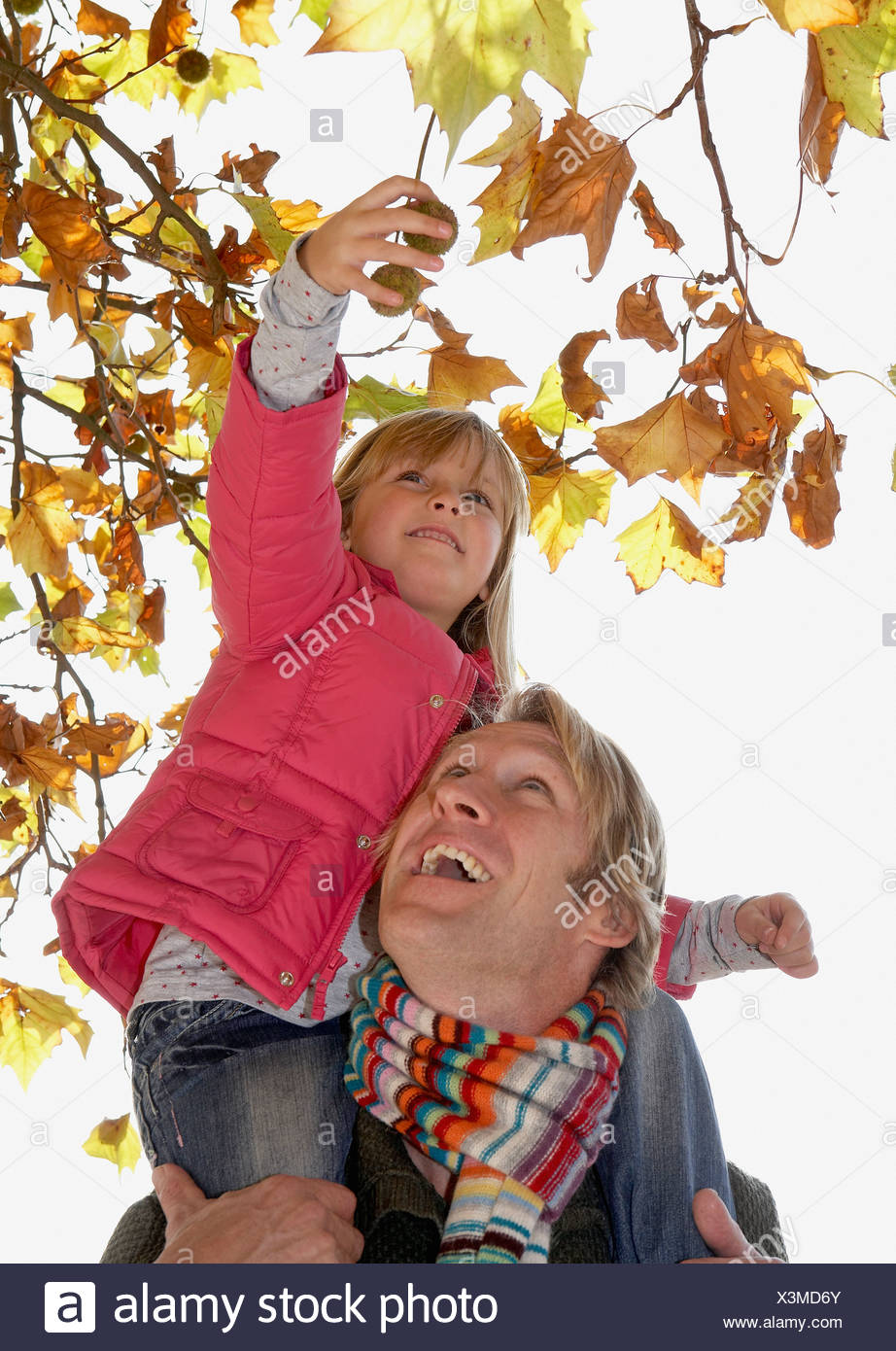 Man holding up young girl to pick something off a tree - Stock Image