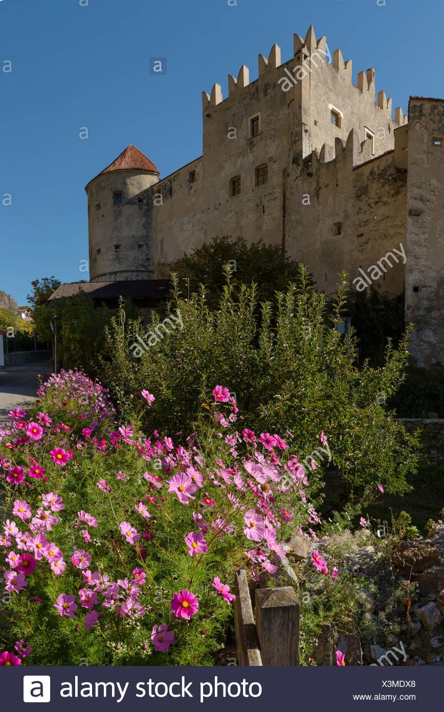Italy, Europe, Südtirol, South Tyrol, Upper Adige, Alto Adige, Kastelbell, Castelbello, Kastelbell, castle, flowers, autumn, - Stock Image