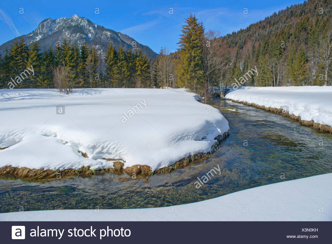 creek in wintry scenery near Ammer sources, with Laber and Ammergauer Alps, Germany, Bavaria, Oberbayern, Upper Bavaria - Stock Image