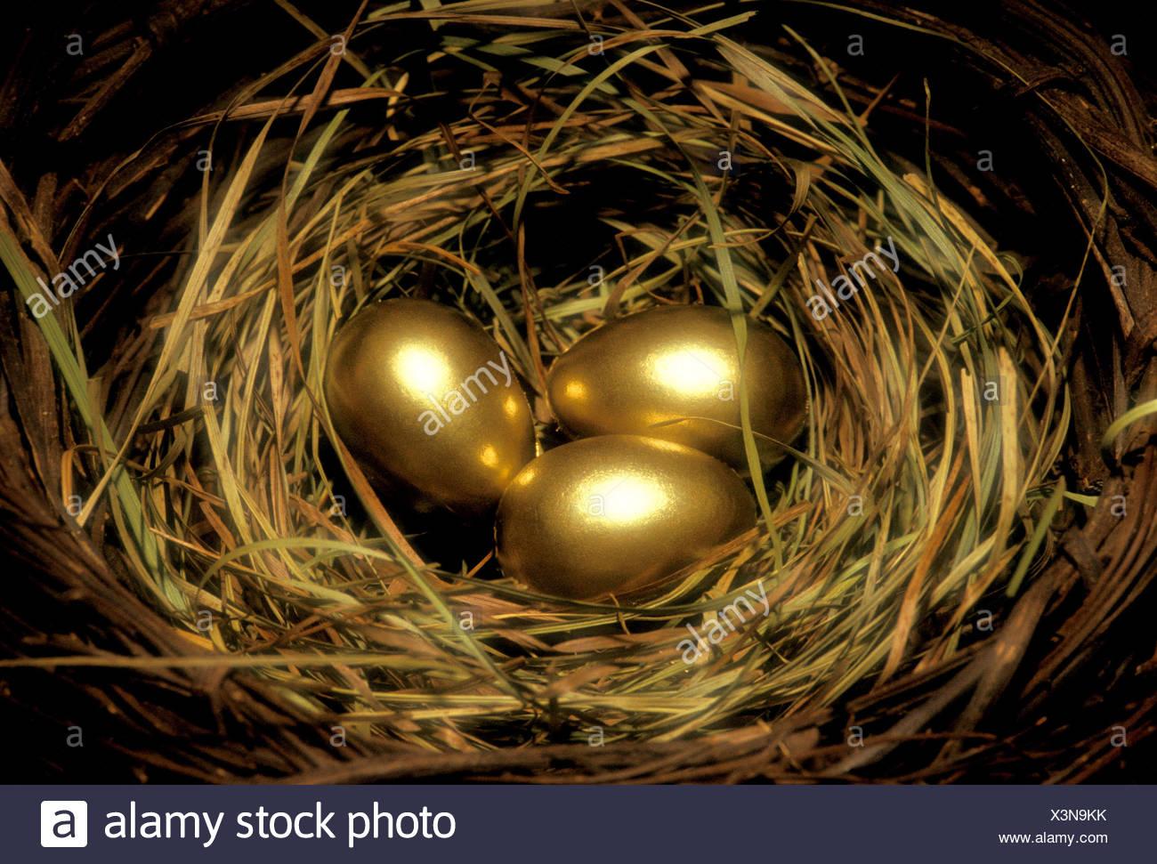Golden eggs in nest Investments savings retirement - Stock Image