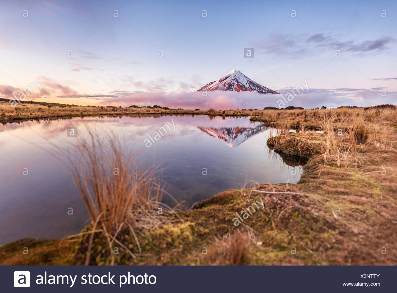 Reflection in Pouakai Tarn lake, pink clouds around stratovolcano Mount Taranaki or Mount Egmont at sunset, Egmont National Park - Stock Image