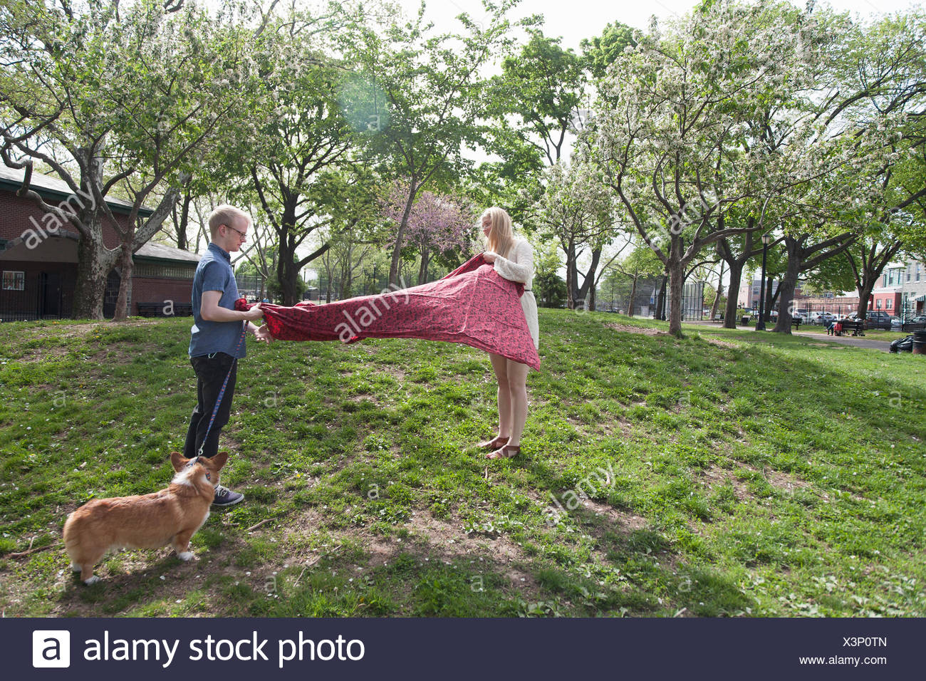 Young couple shaking picnic blanket in park - Stock Image