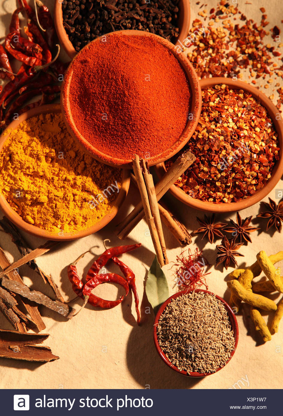 DRIED SPICES - Stock Image