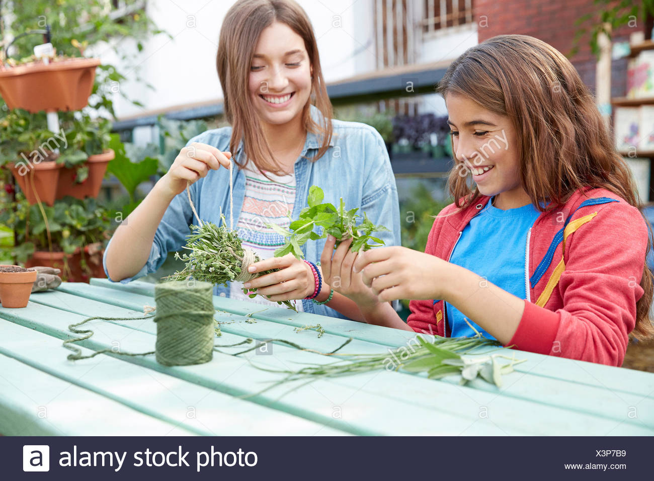Latina sisters bundling herbs at garden table - Stock Image