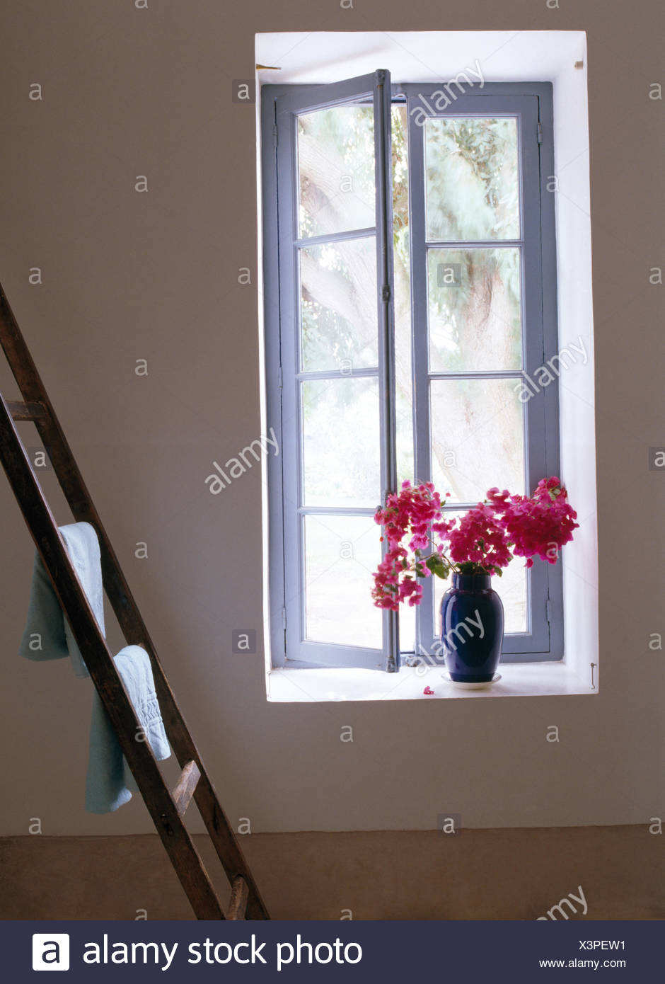 . Vase of pink bougainvillea on window sill in modern Moroccan bedroom