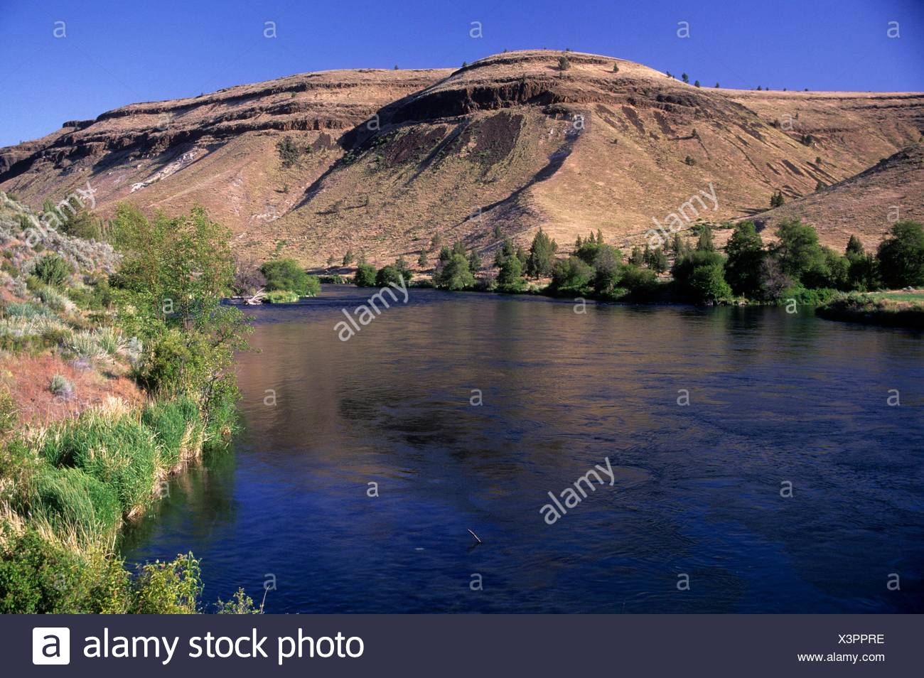 Deschutes Wild and Scenic River from Trout Creek Trail, Prineville District Bureau of Land Management, Oregon. Stock Photo