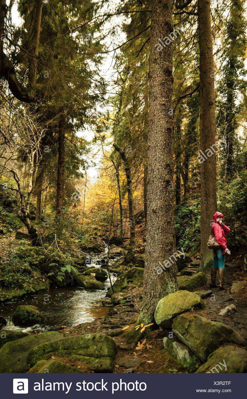Woman Standing By Wyming Brook In Forest - Stock Image