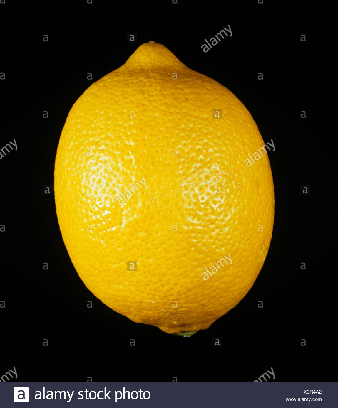 Whole citrus fruit lemon variety Eureka - Stock Image