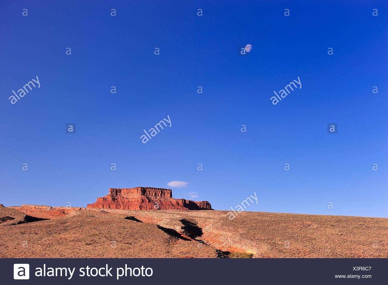 Landscapes, Cedar Mesa, near Bluff, Colorado Plateau, Utah, USA, United States, America, landscape - Stock Image