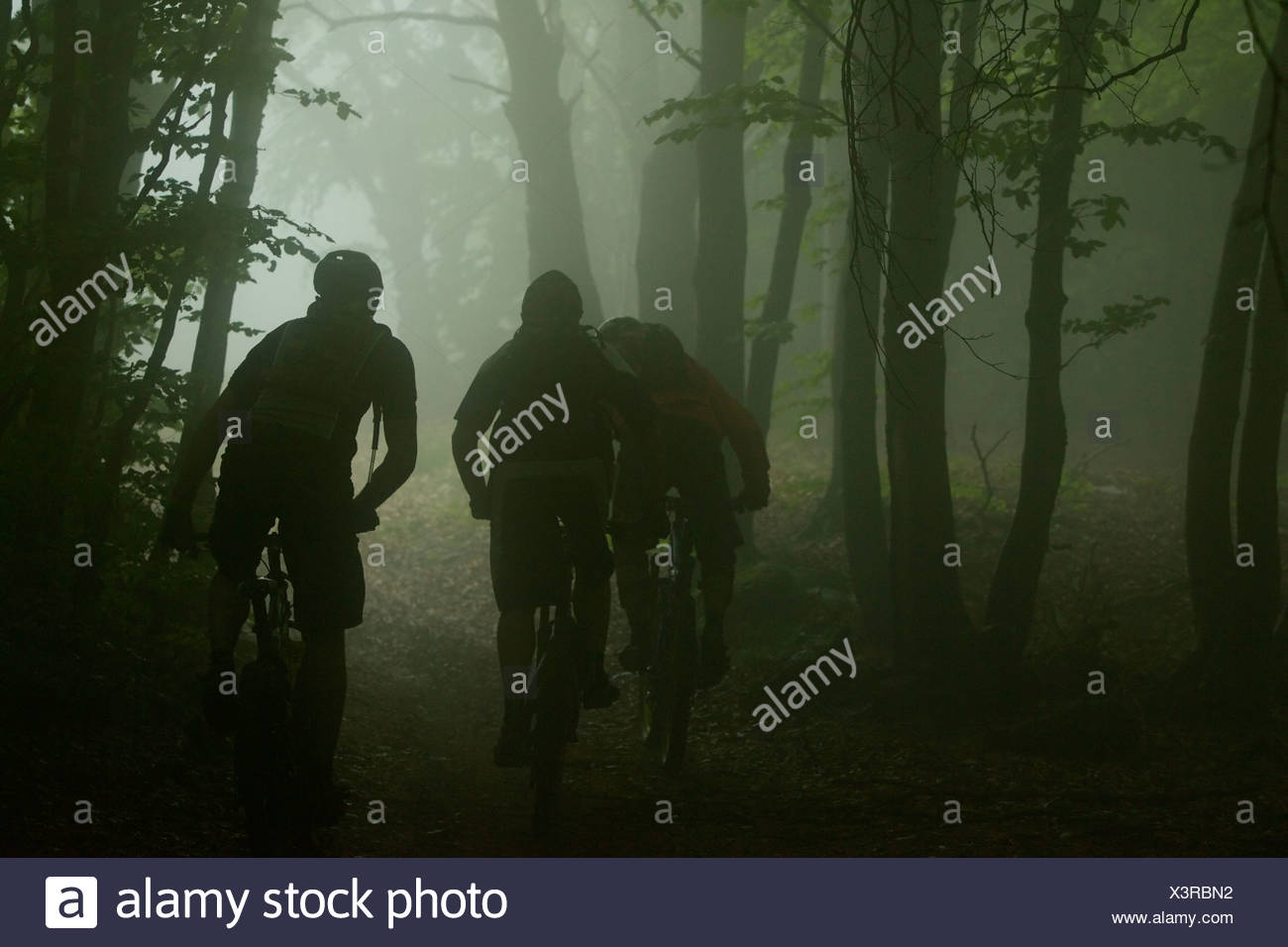 Three mountainbike riders driving through a dark forest - Stock Image
