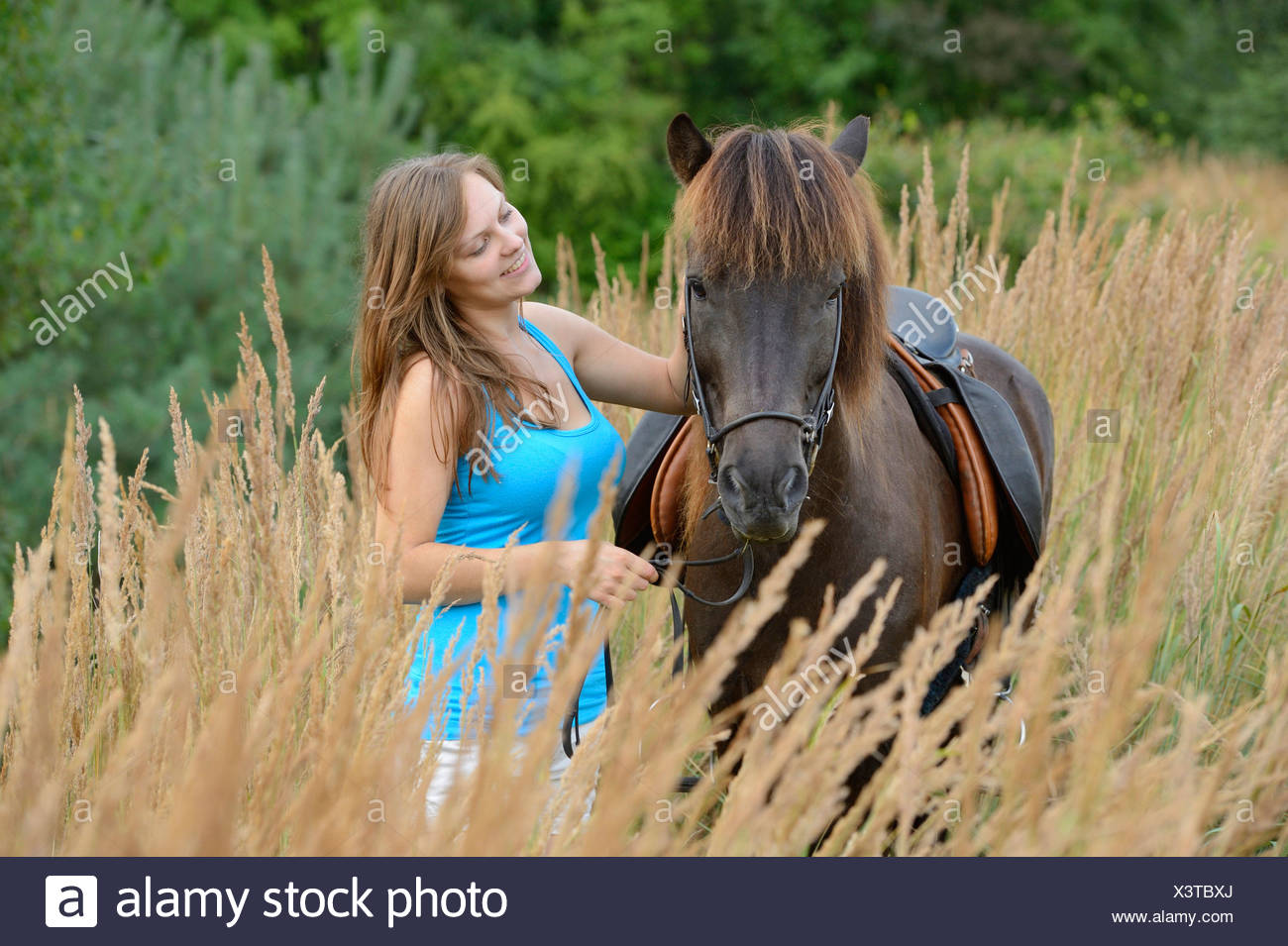 Young woman with an icelandic horse, Franconia, Bavaria, Germany, Europe - Stock Image