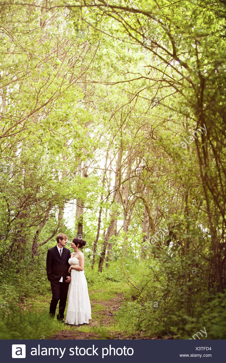 Bridal couple in forest - Stock Image