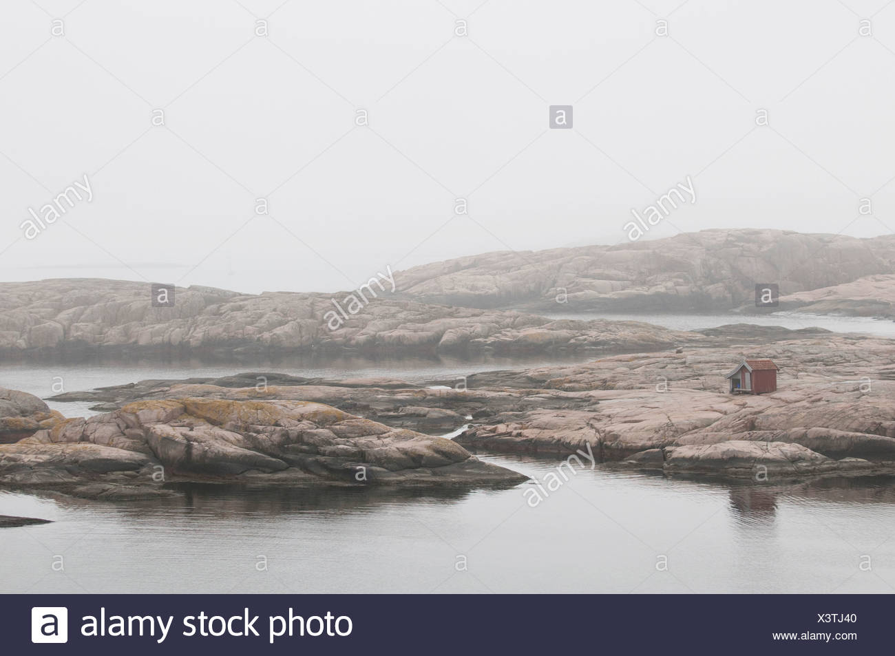 Bare rocks in the mist - Stock Image