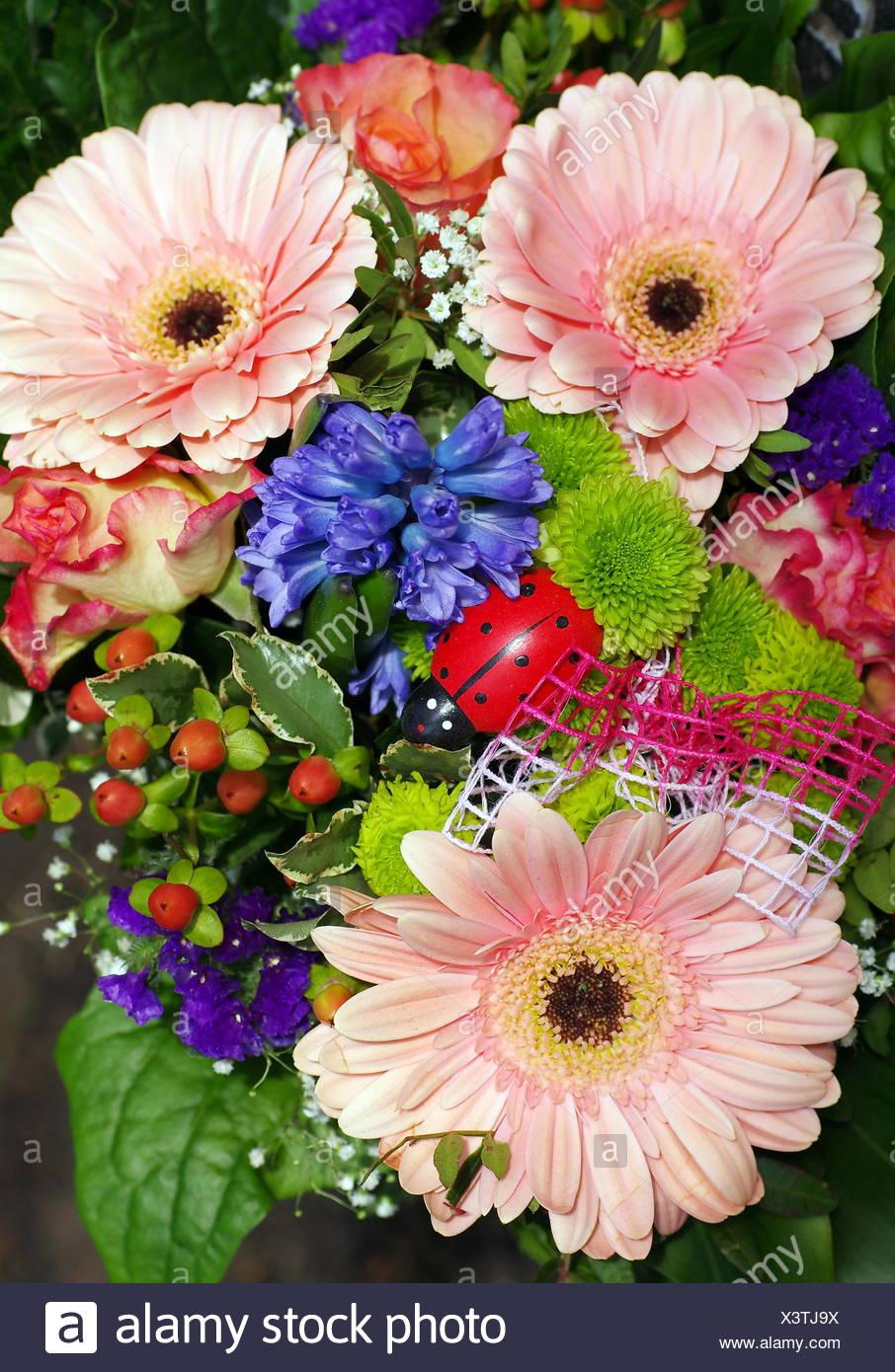 flower bouquet - Stock Image
