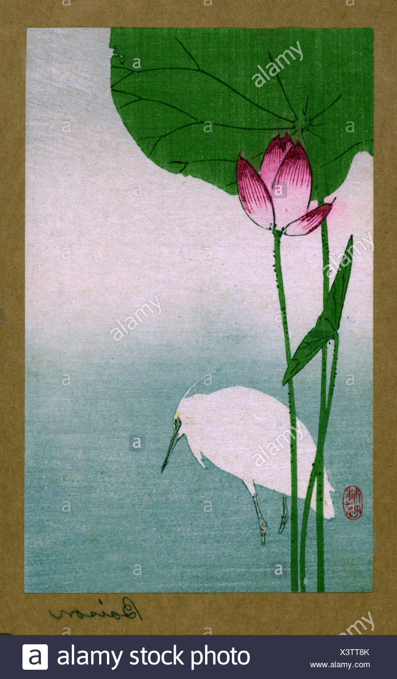 Hasu ni shirasagi translates to White heron and lotus. Japanese Woodcut print by the artist Baison, fl. dates to 1890 ish - Stock Image