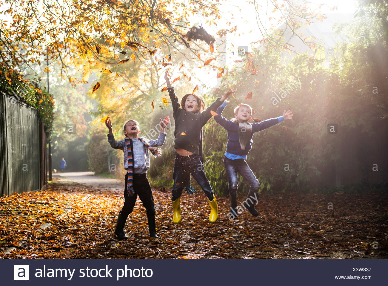 Three young boys, playing outdoors, throwing autumn leaves - Stock Image