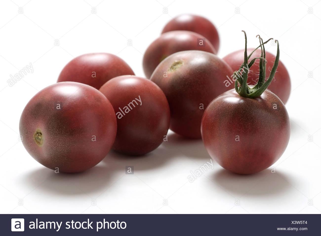 Tomato varieties: black cherry tomato - Stock Image