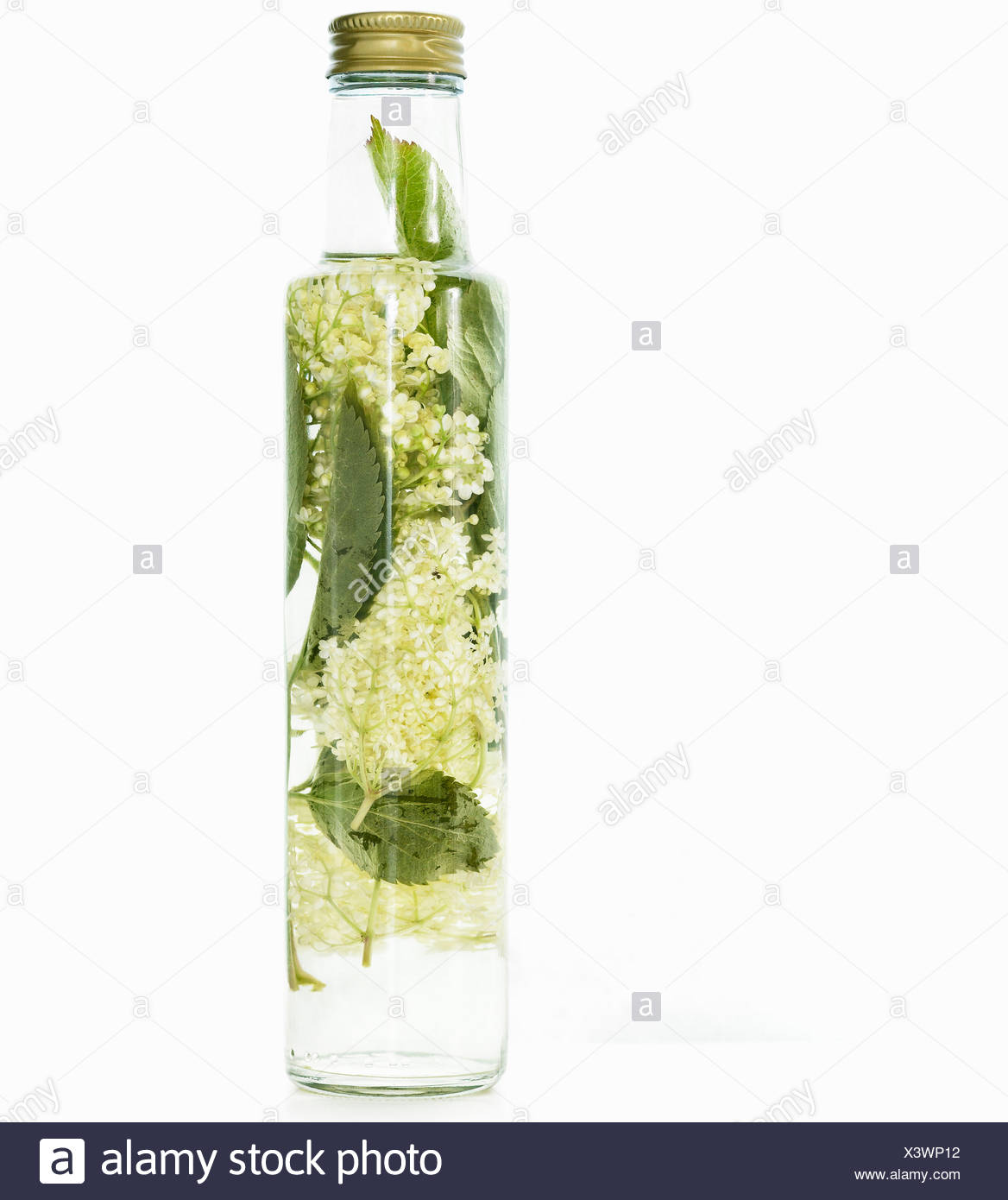Bottle of herbed olive oil - Stock Image