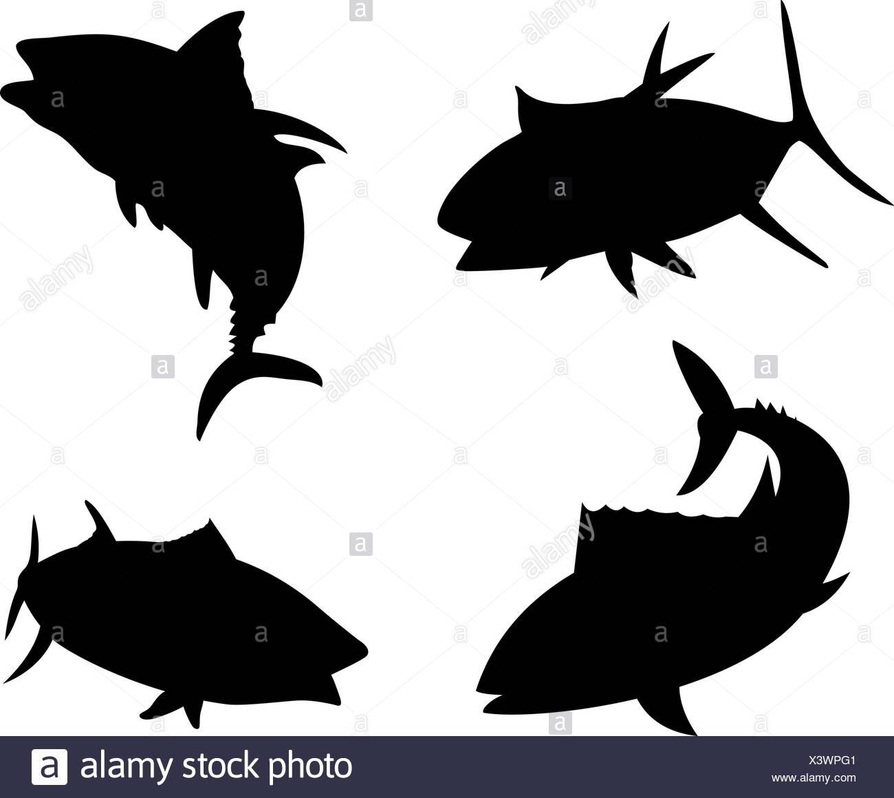 Yellow Fin Tuna Fish Silhouette Stock Photo: 277776353 - Alamy