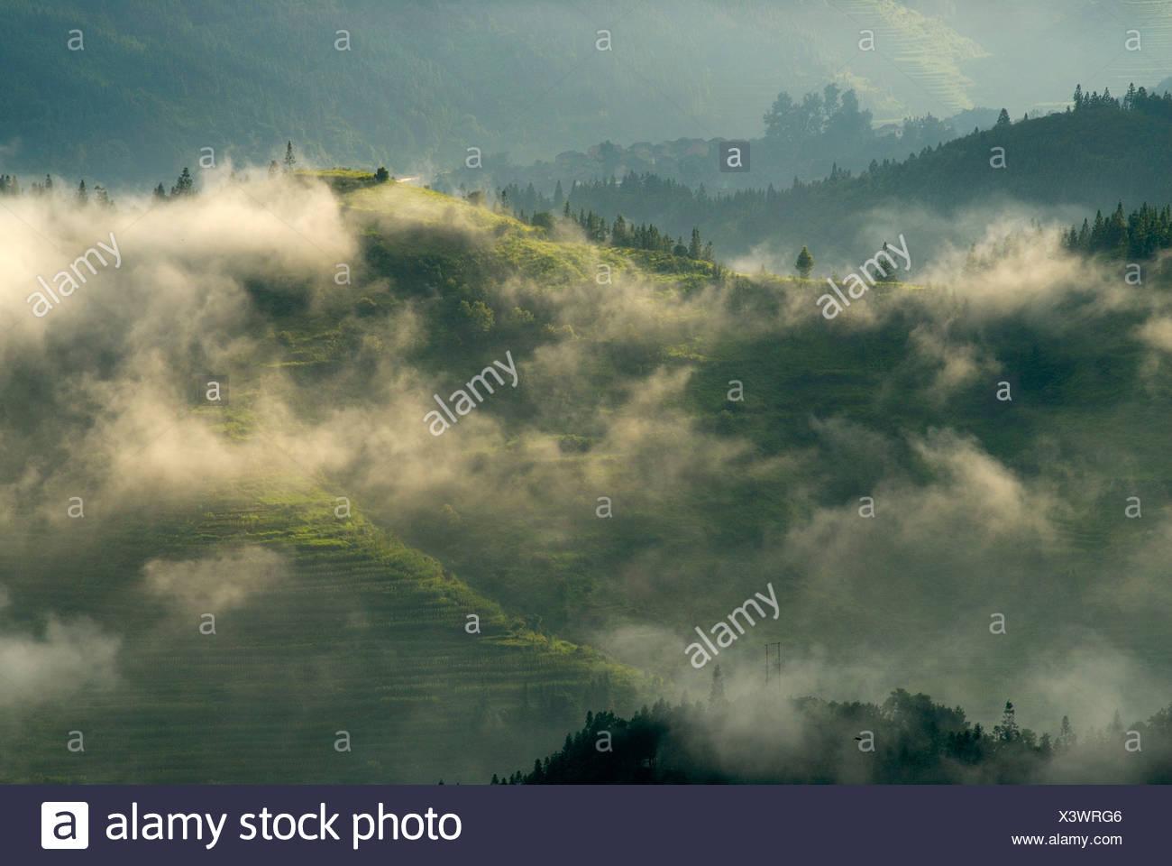 Rice terraces of the Basha Minority, Basha, Guizhou, Southern China - Stock Image