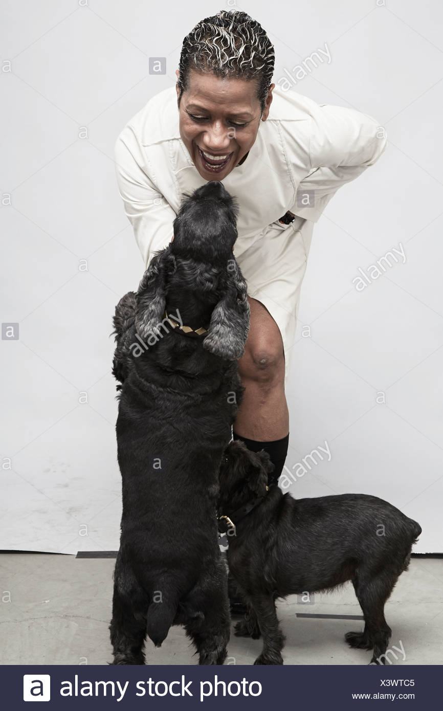 Studio shot of mature woman playing with pet dogs - Stock Image