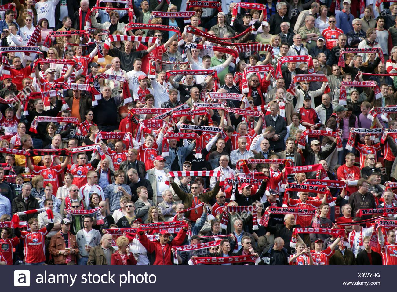 Fans of the german second league soccer club 1, FC koeln in the Rheinenergiestadion. Cologne, Northrhine-Westfalia, Germany - Stock Image