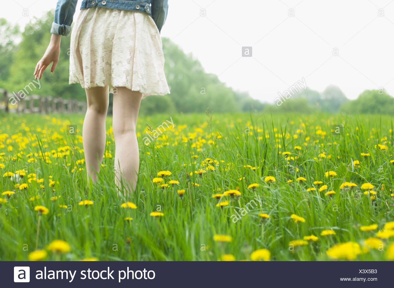 Waist down rear view of young woman strolling in field - Stock Image